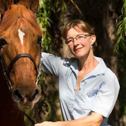 Fachtierärztin für Pferde